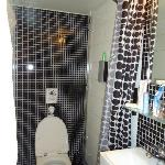 MINISCULE BATHROM/SHOWER