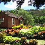 Tour of Allerton Gardens, South Kauai