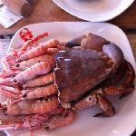 Photo de le crabe-marteau