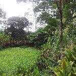 MiniZoo y Jardín Yori