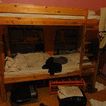 Bunk bed in 6 bunk room
