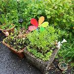 Garden Orderments