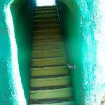 up the stairs of the giant dinosaur slide