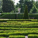 jardin organisé