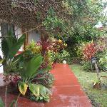 el jardin que da a las habitaciones