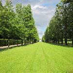 große grüne Parkanlage
