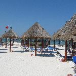 Proper beach bar with swings!