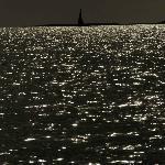 DHOW SEASCAPE