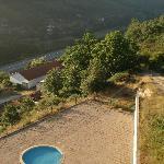 very overgrown pool area