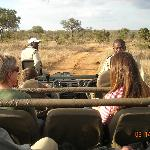 Game Drives- Twice/day!