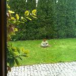 Garden (view from Restaurant)