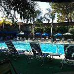 Pool at 8:30 am