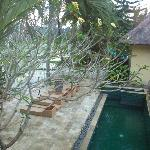 view onto terrace & lower part of pool from Jungle Lodge