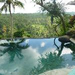 plunge pool with glorious view