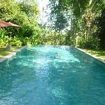 infinity edge lap pool