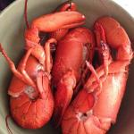 Canner lobsters I cooked in the cottage straight from the lobsterman in the wharf $20 for 4