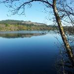 Lochness view