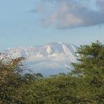 Terassenblick Kilimanjaro