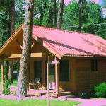Cabin under the Pines