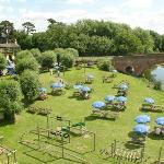 Our lovely riverside garden
