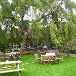 rear garden of tea rooms