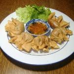 Raviolis chinois fris - 5€
