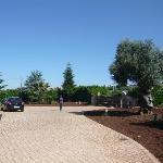 Garten mit Zufahrt