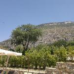 Photo de Borgo la Pietraia