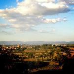 Uitzicht vanaf balkon (Poggio Olivo)
