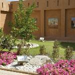 Oasen i Al Ain