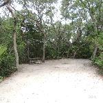 Campsite at North Beach Campground near Ponte Vedre. Fl