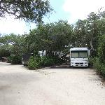 Campsite at North Beach Campground in St. Augustine, FL