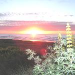 Waitarere Sunset