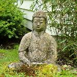 Front yard Budda