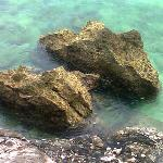 the bluish green water...