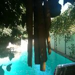 Wind Chimes over the pool