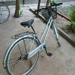 """""""my"""" bicycle"""