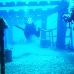 Cozumel - Ship Wreck Felipe - Main Deck