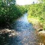 The River Ayr at Haugholm