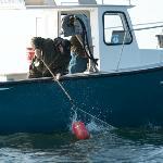 Allez hop les apprentis pêcheurs, on met la main à la pâte!