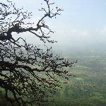 Panoramic Views nearby