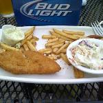 Processed fish with lemons on coaster