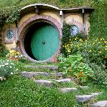 Hobbiton Movie Set Tours