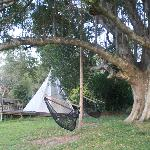 Hammock and teepee