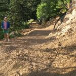 Mt. Cutler trail