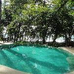 piscine 2 vue du restaurant