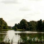 Zamecky lake