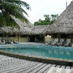Bar/Pool/ Restaurant