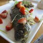 """Pennsylvania Trout with Braised Lentils, """"Chopped"""" Spinach, Toasted Almonds, Strawberry Salad"""