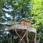 Brand new tree fort for two (booked every weekend this summer)